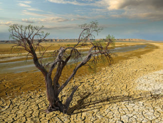 California water restrictions, drought