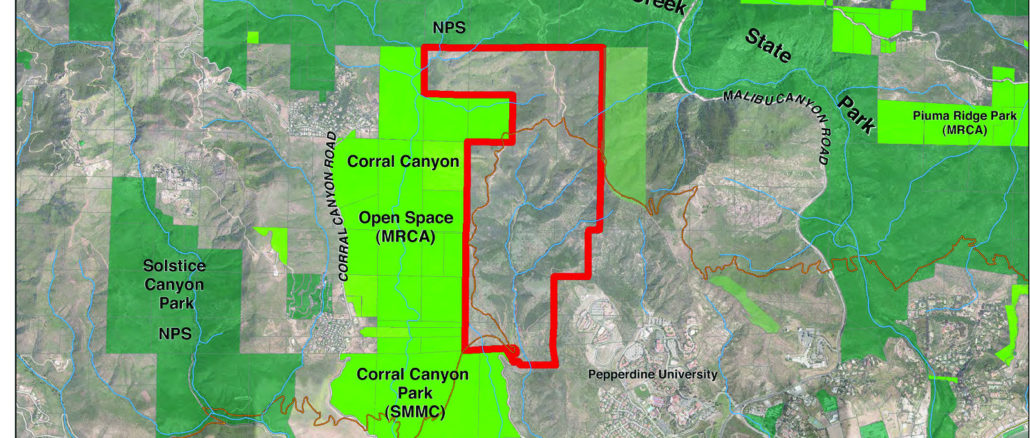 Santa Monica Mountains Conservancy Advisory Committee (SMMCAC)