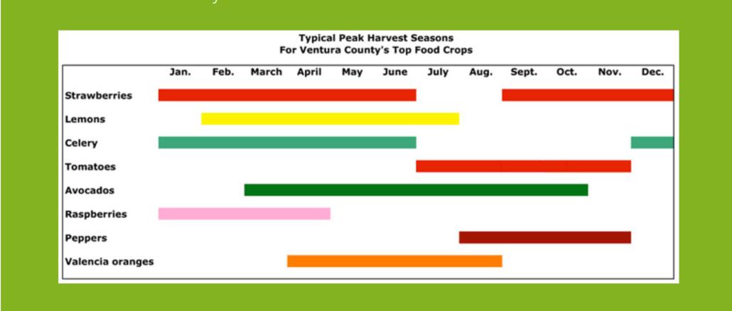 Ventura County crops