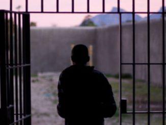 Freed Prisoner